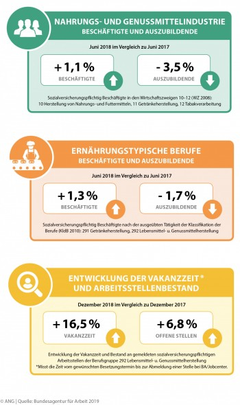 ANG-Beschäftigtenbericht 01/2019